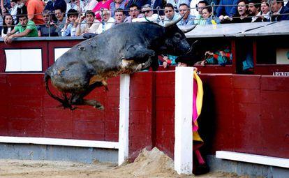 'Taponero' salta la barrera en el festejo de este domingo.