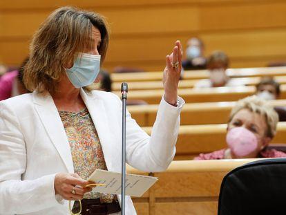 MADRID, 08/06/2021.- La vicepresidenta cuarta y ministra para la Transición Ecológica, Teresa Ribera, interviene durante la sesión de control al Gobierno celebrada en el Senado, este martes en Madrid. EFE/ Mariscal