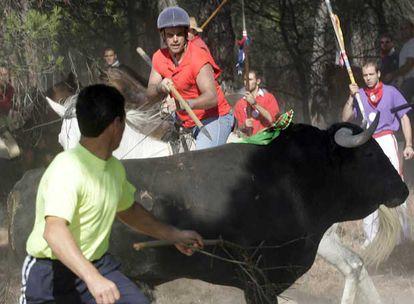 Torneo del Toro de la Vega celebrado ayer en la localidad vallisoletana de Tordesillas.