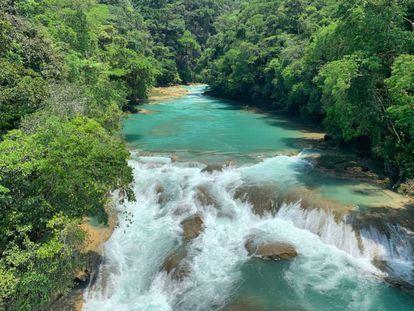 La selva Lacandona: un paraíso amenazado