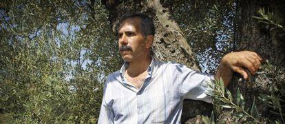 Antonio Romero, jornalero de Villamanrique de la Condesa (Sevilla), en un olivar del pueblo.