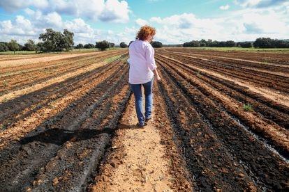 Natividad Pérez, alcaldesa de Balsa de Ves, camina por un terreno agrícola lleno de digestato reseco.