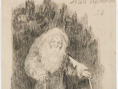 'Aún aprendo' de la serie Álbum de Burdeos de Goya.