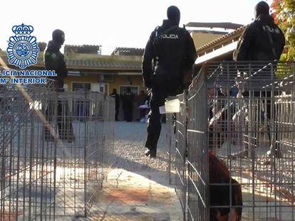 Operación policial contra las peleas de gallos en Sangonera la Verde (Murcia).