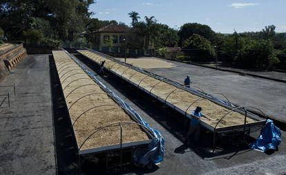 Trabajadores de SOIL manejan los contenedores de residuos en Haití.