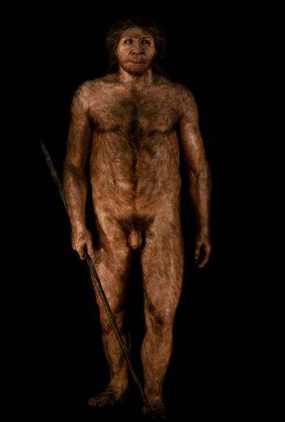 'Miguelón', en el Museo de la Evolución Humana de Burgos.