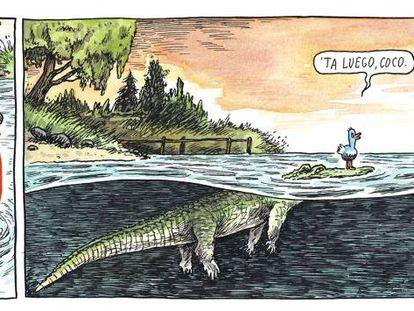 Cuidado con el cocodrilo