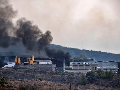 Una cementera en Tacande es arrasada por la lava del volcán en La Palma.