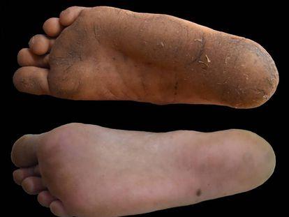 Diferencia entre el pie calzado, abajo, y el descalzo.