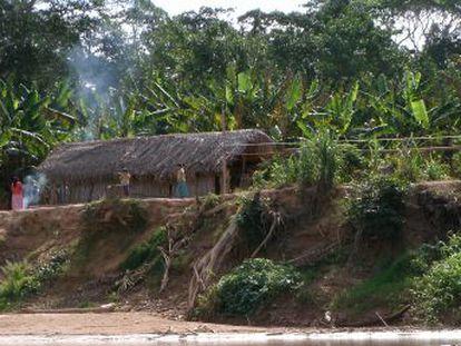 Los ancianos de un pueblo amazónico, los tsimane, tienen la misma salud vascular que un occidental de 50 años