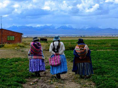 Tres 'cholitas', como se conoce a las bolivianas que usan las vestimentas características de esta zona Andina, caminan por la población de Huarialtaya, en el municipio de Pucarani, en el Altiplano.