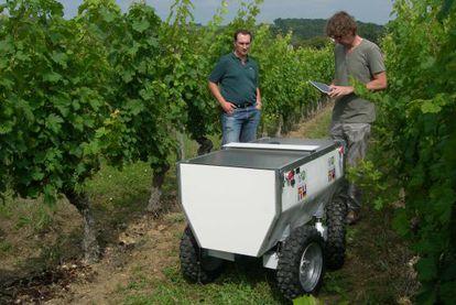 Pruebas de VineRobot en la cooperativa de Les Vignerons, el pasado verano.
