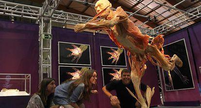 Un aspecto de la muestra 'The human body', en Marbella.