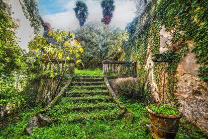 Jardín abandonado en Toscana (Italia).