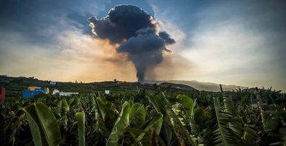 Nube provocada por el volcán de Cumbre Vieja.