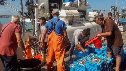 El barco 'Playa Yerbabuena', beneficiario del vigente acuerdo de pesca entre la UE y Marruecos, a su llegada Barbate (Cádiz) en julio de 2019, tras faenar en aguas del Sáhara Occidental.