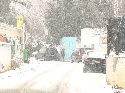 Cae la nieve en la Cañada Real.