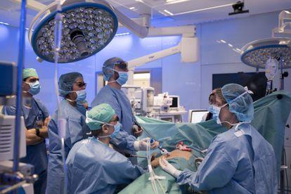 El doctor Antonio Alcaraz (sentado en el centro) y su equipo extraen un riñón a un donante vivo para un trasplante a un familiar, en enero de 2019.