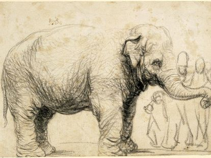 Rembrandt: A sketch of Hansken, 1637. Dominio público