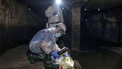 Los técnicos recogen muestras de aguas fecales en el colector norte de la ciudad de Valencia.