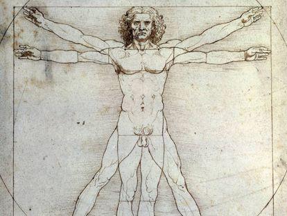Dibujo del 'Hombre de Vitruvio' (1490) de Leonardo de Vinci.