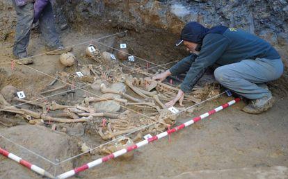 Trabajos de exhumación de fusilados en la Guerra Civil en Zigoitia (Álava).