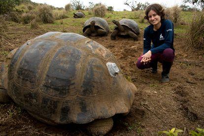 La veterinaria Ainoa Nieto posa con tres tortugas gigantes de Galápagos, donde dirige la investigación de la fundación Charles Darwin sobre estos animales.