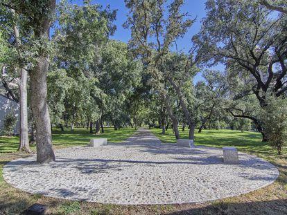 Zona de encinar del entorno del meteorológico, en el parque del Retiro. ANTONELLO DELLANOTTE