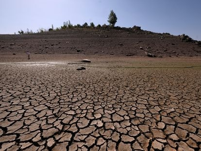 Una parte completamente seca del embalse de Ricobayo (Zamora), la semana pasada.