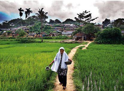 Médicos Sin Fronteras y 'EL PAÍS SEMANAL' se desplazan a Bangladesh y Malaisia para recoger el testimonio del horror de la minoría rohingyas, perseguida en Birmania.  Una mujer camina en busca de agua en el campo de refugiados de Kutupalong (Bangladesh), donde viven hacinados más de 30.000 rohingyas.
