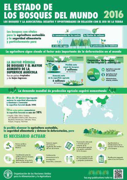 Infografía del informe sobre el estado mundial de los bosques de 2016.