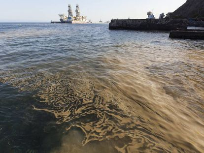 Masa de microalgas en la playa de Valleseco, en Santa Cruz de Tenerife.