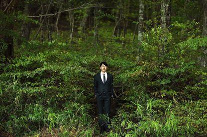 En Japón es habitual que los médicos receten 'shinrin-yoku' (pasear por el bosque).