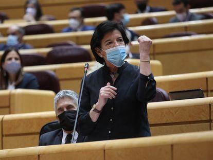 La ministra de Educación y Formación Profesional, Isabel Celaá, en el Senado.