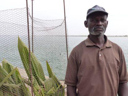 El profesor Cheikh Sarr frente junto a uno de los árboles que cuida en el muelle Quai Rome, en Saint Louis.