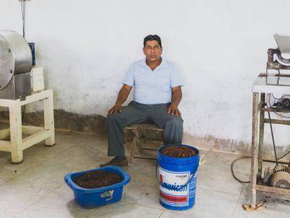 Gabriel Sangama, en su finca rodeado de cacao.