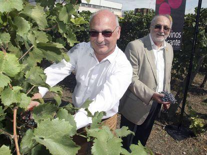 El investigador Francis Mojica en un acto de la denominación de origen de vinos Alicante.