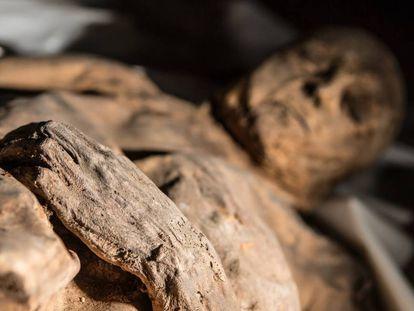 Una de las momias cuyo estudio ha permitido conocer el pasado de la tuberculosis o la viruela.