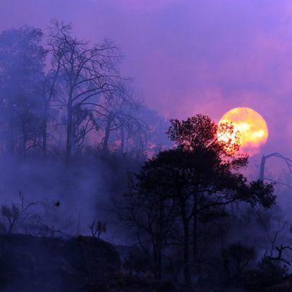 Las autoridades habían advertido desde principios de marzo del riesgo de incendios durante la temporada de estiaje y prohibieron el acceso a los visitantes de los cerros de Tepoztlán, unos 80 kilómetros al sur de Ciudad de México.