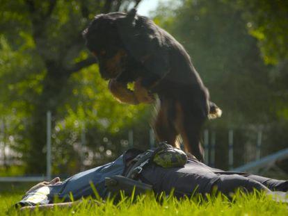 Poncho simula la reanimación a su instructor Javier Ramírez. En vídeo, el reportaje completo.