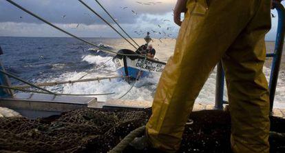 Pesca de sardinas en alta mar.