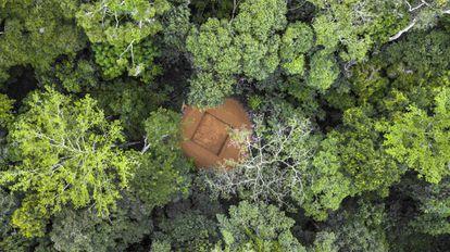 Reserva de la Biosfera de Yangambi, en el norte de la RDC, con una parcela despejada para albergar una torre de flujo donde se medirá el intercambio neto de CO2.