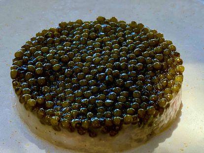 Tartar de cigalas con caviar. J.C. CAPEL