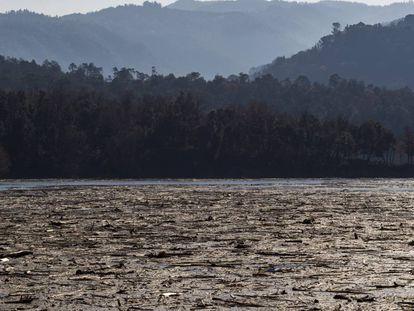 Fotogalería | La limpieza del pantano de Sau tras el paso de Gloria