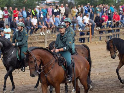 Agentes de la Guardia Civil durante la celebración del Toro de la Vega este año.