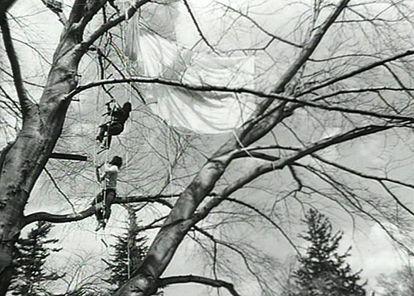 Un fotograma de uno de los vídeos de Gordon Matta-Clark. 'Tree Dance' (Danza del árbol). 1971.
