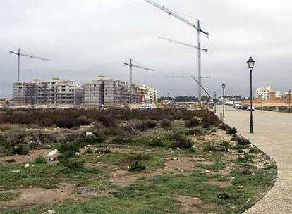Bloques de apartamentos en construcción en la playa de la Mosca de Orihuela.