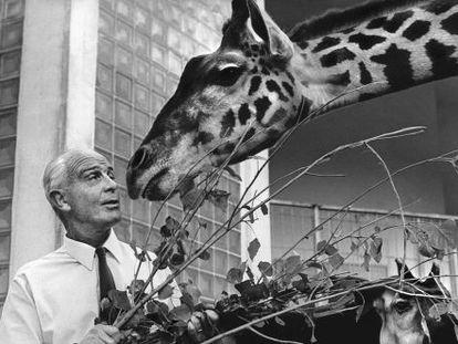 El profesor Bernhard Grzimek en 1967, cuando era director del parque zoológico de Frankfurt.