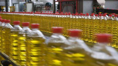 Botellas de aceite, en una empresa sevillana.