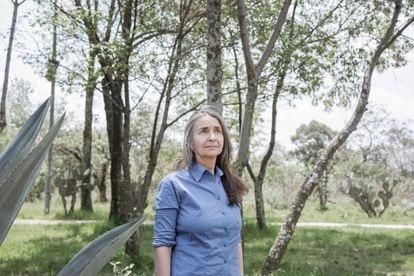 La investigadora Julia Carabias, en Ciudad de México.